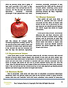 0000072164 Word Templates - Page 4