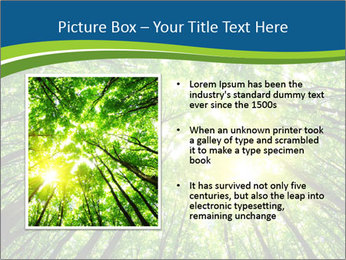 0000072166 PowerPoint Templates - Slide 13