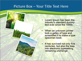 0000072166 PowerPoint Templates - Slide 17