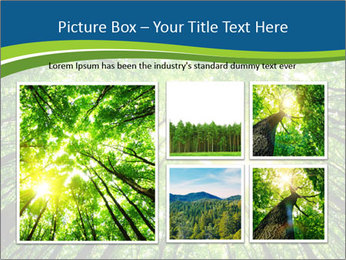 0000072166 PowerPoint Templates - Slide 19