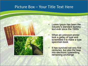 0000072166 PowerPoint Templates - Slide 20