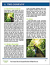 0000072166 Word Template - Page 3