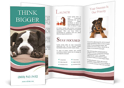 0000072186 Brochure Template