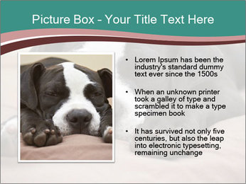 0000072186 PowerPoint Template - Slide 13