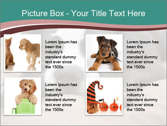 0000072186 PowerPoint Template - Slide 14