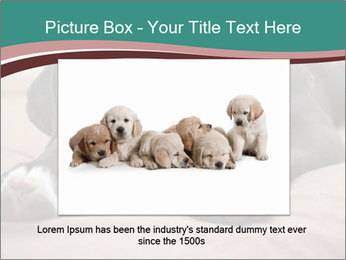0000072186 PowerPoint Template - Slide 16