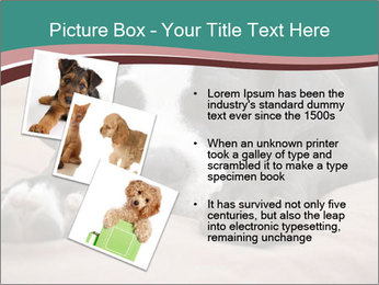 0000072186 PowerPoint Template - Slide 17