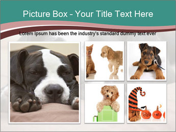 0000072186 PowerPoint Template - Slide 19