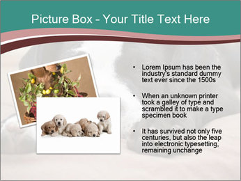 0000072186 PowerPoint Template - Slide 20