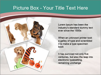 0000072186 PowerPoint Template - Slide 23