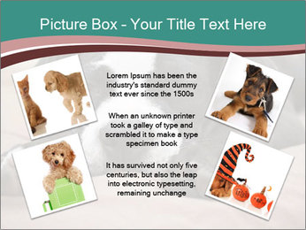 0000072186 PowerPoint Template - Slide 24