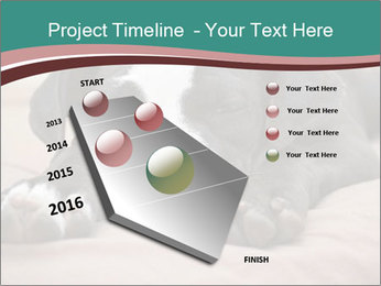 0000072186 PowerPoint Template - Slide 26