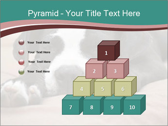 0000072186 PowerPoint Template - Slide 31