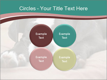 0000072186 PowerPoint Template - Slide 38