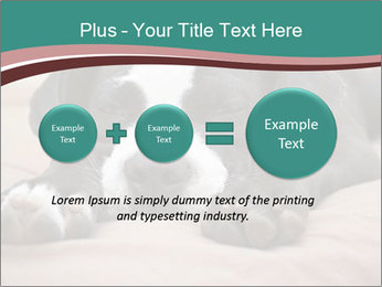 0000072186 PowerPoint Template - Slide 75
