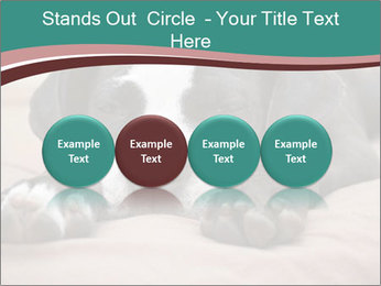 0000072186 PowerPoint Template - Slide 76