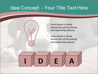 0000072186 PowerPoint Template - Slide 80