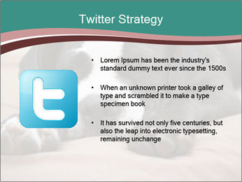 0000072186 PowerPoint Template - Slide 9