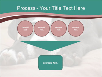 0000072186 PowerPoint Template - Slide 93