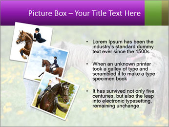 0000072187 PowerPoint Template - Slide 17