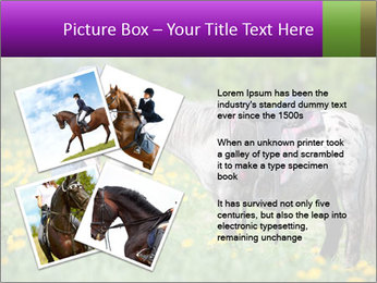 0000072187 PowerPoint Template - Slide 23