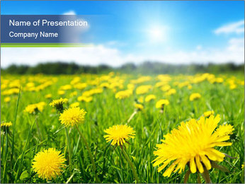 0000072190 PowerPoint Template - Slide 1