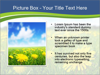 0000072190 PowerPoint Template - Slide 13