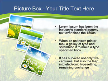 0000072190 PowerPoint Template - Slide 17