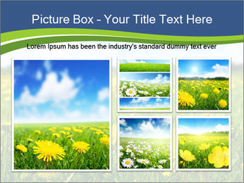 0000072190 PowerPoint Template - Slide 19