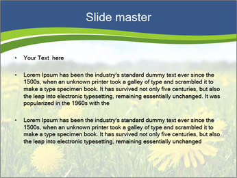 0000072190 PowerPoint Template - Slide 2