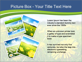 0000072190 PowerPoint Template - Slide 23