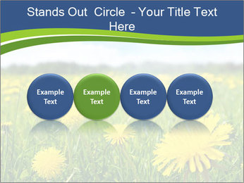 0000072190 PowerPoint Template - Slide 76