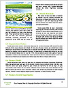 0000072190 Word Templates - Page 4