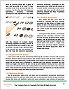 0000072192 Word Templates - Page 4