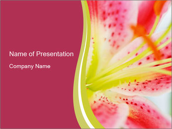 0000072199 PowerPoint Template - Slide 1