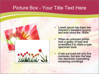 0000072199 PowerPoint Template - Slide 20