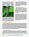 0000072200 Word Templates - Page 4