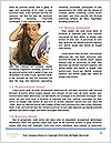 0000072201 Word Template - Page 4