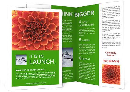 0000072205 Brochure Template