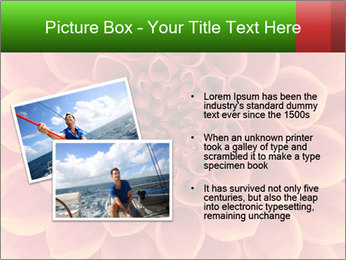 0000072205 PowerPoint Template - Slide 20