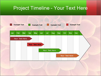 0000072205 PowerPoint Template - Slide 25