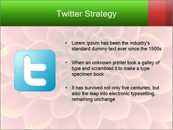 0000072205 PowerPoint Template - Slide 9