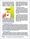 0000072208 Word Templates - Page 4
