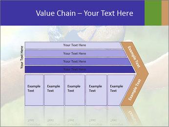 0000072209 PowerPoint Templates - Slide 27