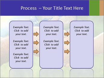 0000072209 PowerPoint Templates - Slide 86