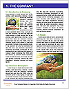 0000072209 Word Template - Page 3