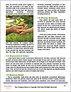 0000072209 Word Template - Page 4