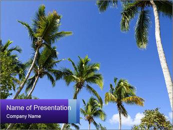 0000072210 PowerPoint Template - Slide 1