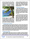 0000072210 Word Template - Page 4