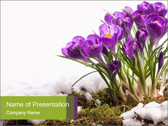 0000072211 PowerPoint Template